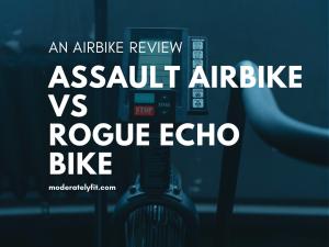 An airbike review - Assault airbike vs Rogue echo bike